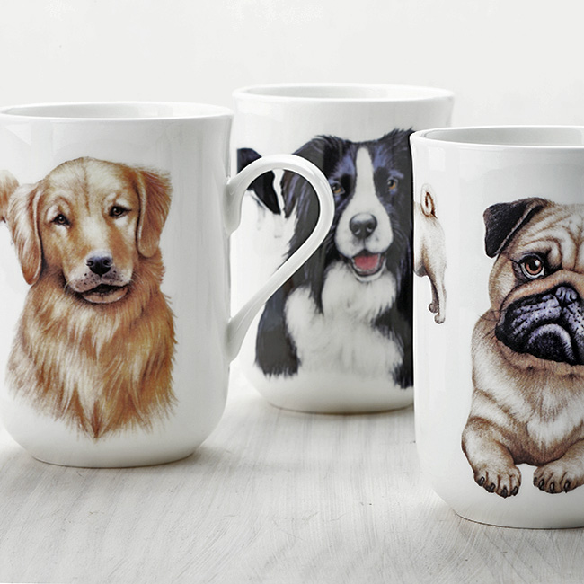 Animal & Pet Collection